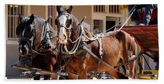 Bay Colored Clydesdale Horses Beach Towel