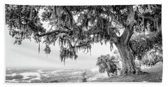 Bay Street Oak View Beach Towel by Scott Hansen