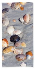 Beach Shells Beach Sheet