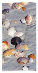 Beach Shells Beach Sheet