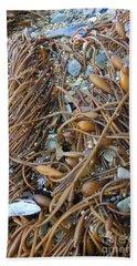 Beach Towel featuring the photograph Coastal Creation by Nareeta Martin
