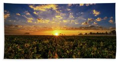 Bean Field Dawn Beach Towel