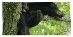 Beach Towel featuring the photograph Bear And Cub In Tree by Coby Cooper