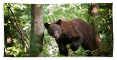 Bear In The Woods Beach Towel