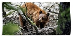 Beach Towel featuring the photograph Bear In Trees by Scott Read