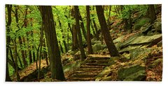 Bear Mountain Steps In The Spring Beach Towel