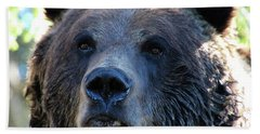 Bear On Grouse Beach Towel