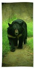 Bear On The Prowl Beach Sheet by Trish Tritz
