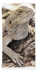 Bearded Dragon Beach Sheet