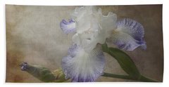 Bearded Iris Beach Towel by Patti Deters