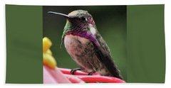 Beautiful Anna's Hummingbird On Perch Beach Towel
