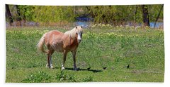 Beautiful Blond Horse And Four Little Birdies Beach Towel by James BO Insogna