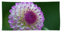 Beautiful Dahlia 2 Beach Sheet