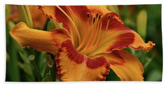 Beach Towel featuring the photograph Beautiful Daylily by Sandy Keeton