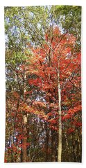 Beach Towel featuring the photograph Beautiful Fall Colors  by Irina Sztukowski