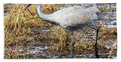 Beautiful Day For A Walk -sandhill Crane   Beach Towel by Ricky L Jones