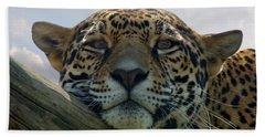 Beautiful Jaguar Beach Towel by Sandy Keeton