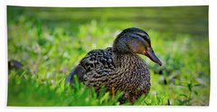 Beach Towel featuring the photograph Beautiful Mama Duck by Linda Unger