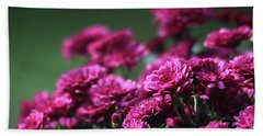 Beach Towel featuring the photograph Beautiful Mums by Trina Ansel