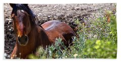 Beautiful Mustang Stallion Beach Sheet