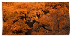 Beautiful Orange Tree On A Fall Day Beach Towel