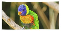 Beautiful Perched Mccaw On A Branch. Beach Towel