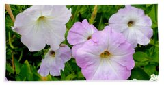 Beautiful Petunia Flower 1 Beach Towel