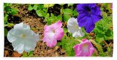 Beautiful Petunia Flower 3 Beach Towel