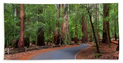Beautiful Redwood Grove Beach Towel