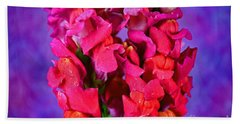 Beautiful Snapdragon Flowers Beach Towel
