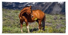 Beautiful Wild Mustang Horse Beach Sheet