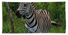 Beautiful Zebra Beach Sheet