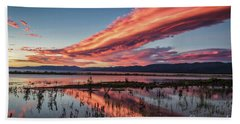 Beauty In A Wicked World Beach Towel by Mitch Shindelbower