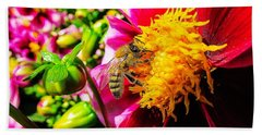 Beauty Of The Nature Beach Towel by Cesar Vieira