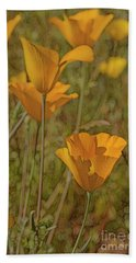 Beauty Surrounds Us Beach Towel by Tom Kelly