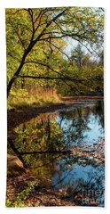 Beach Towel featuring the photograph Beaver's Pond by Iris Greenwell