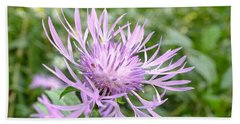 Bee Balm Beach Sheet
