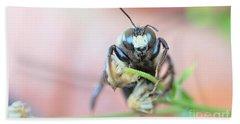 Bee Busy Beach Sheet