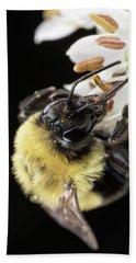 Bee Macro 1 Beach Sheet