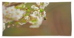 Bee On A Cherry Blossom Beach Towel