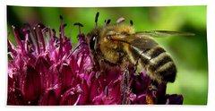 Bee On A Dark Pink Flower Beach Towel