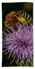 Beach Towel featuring the photograph Bee On A Thistle by Paul Freidlund