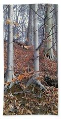 Beech Trees Beach Sheet