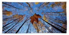 Beach Towel featuring the photograph Before The First Snow by Mircea Costina Photography