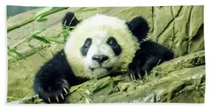 Bei Bei Panda At One Year Old Beach Towel