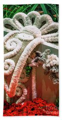 Bellagio Conservatory Giant Christmas Present Beach Sheet