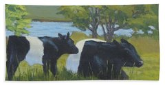 Belted Galloway And Calf Beach Towel