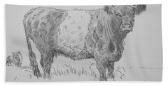 Belted Galloway Cow Pencil Drawing Beach Towel