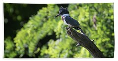 Belted Kingfisher Beach Towel by Gary Hall