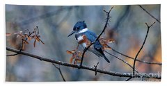 Beach Towel featuring the photograph Belted Kingfisher Perch by Sue Harper